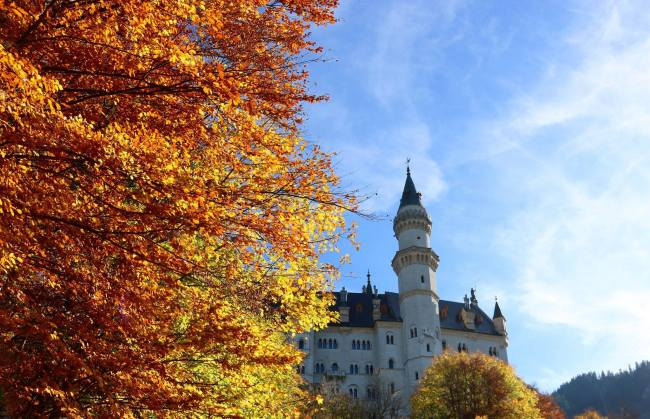 Fall colors at Neuschwanstein Castle